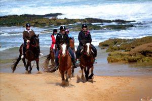 horse_riding_Portsea